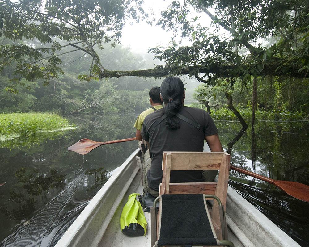 canoe excursion from napo wildlife centre amazon ecuador