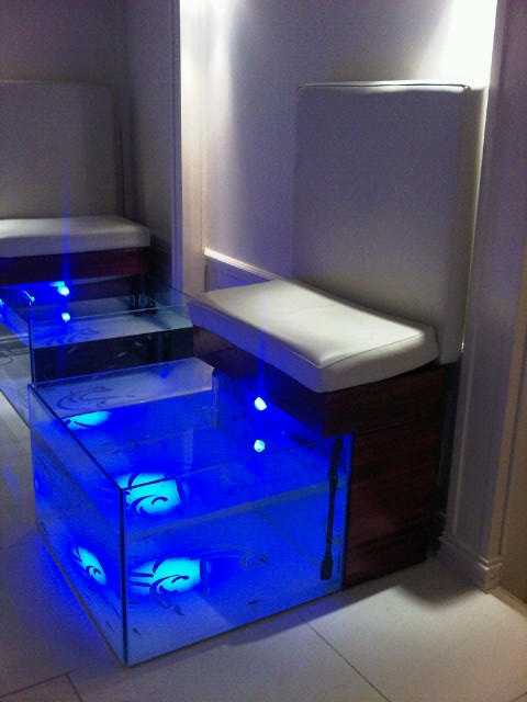 Fish spa at bodyheat cellophaneland for Garra fish spa