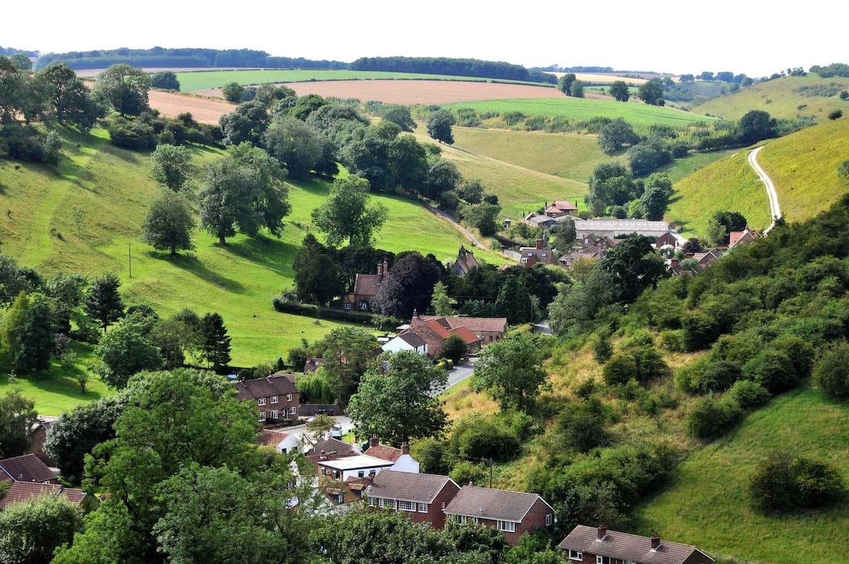 David Hockney Yorkshire Wolds