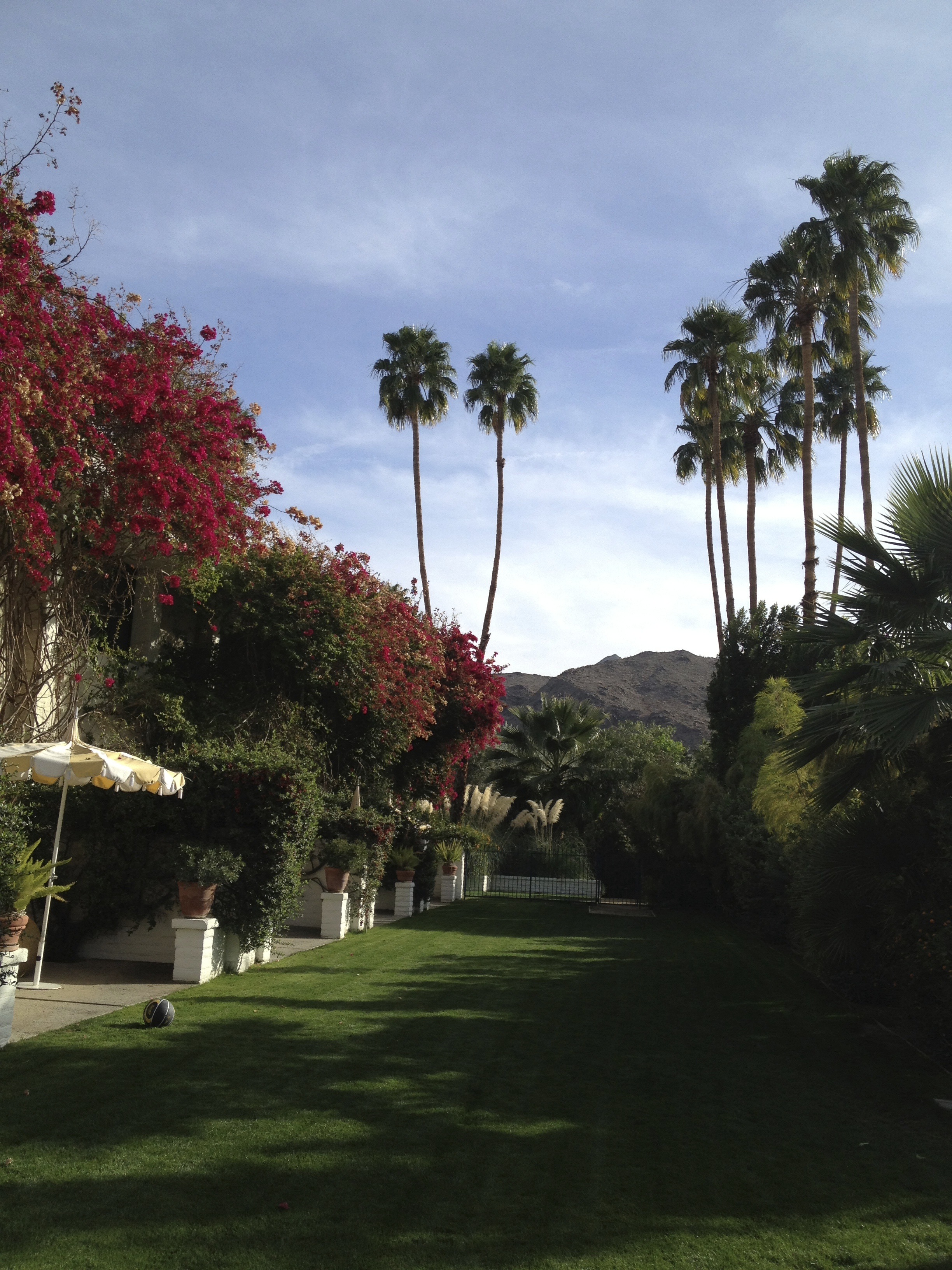 Parker Palm Springs CELLOPHANELAND - Palm springs escort reviews