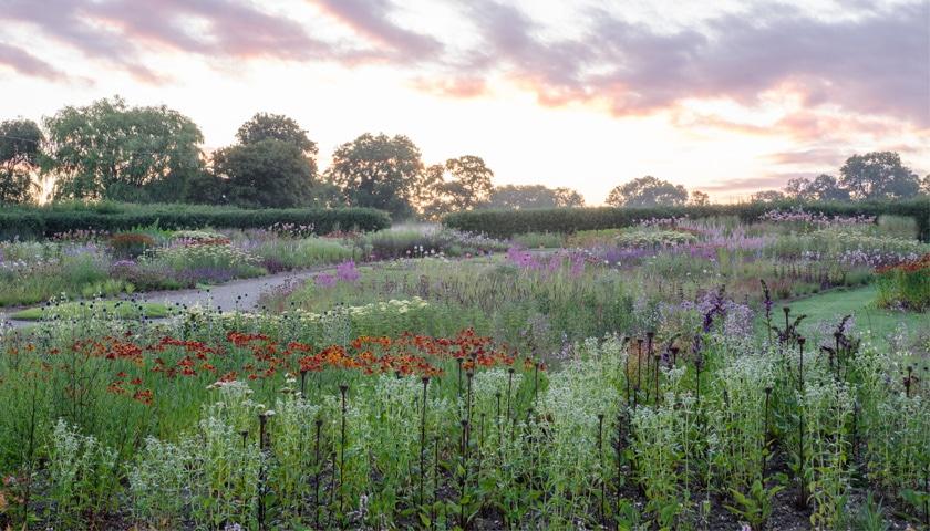 Piet Oudolf Field Durslade Farm