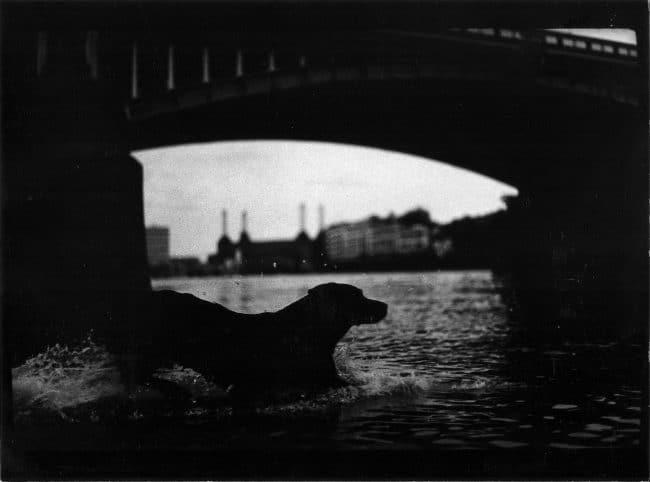 Giacomo-Brunelli-Untitled-Eternal-London