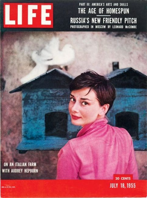 Hepburn Portraits of an icon