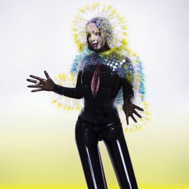 Bjork-Vulnicura Art Vinyl & Belgraves Hotel Best Art Vinyl 2015