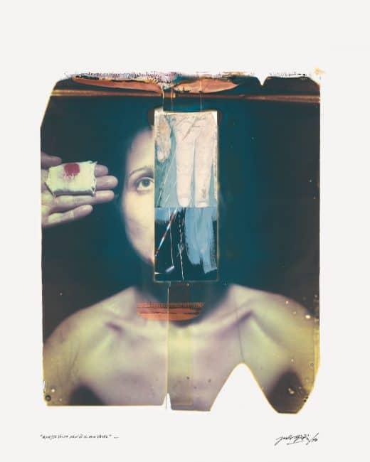 Polaroid Project Paolo Gioli, 2010