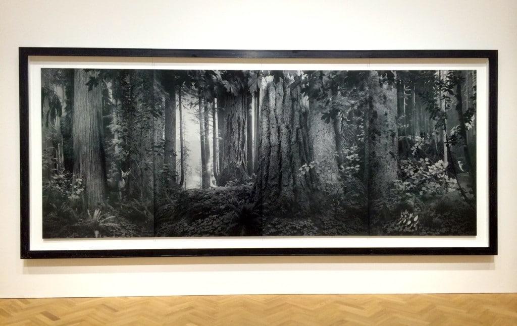 Hiroshi Sugimoto at Pace London